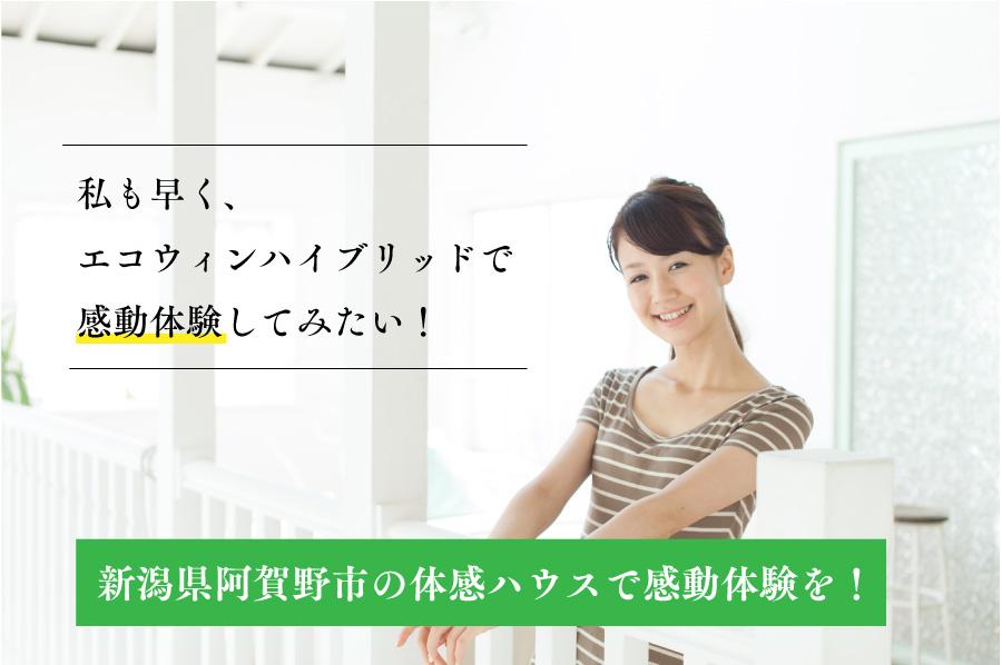 エコウィンハイブリッドは新潟県阿賀野市で体験できます